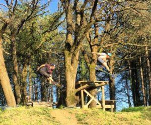 Un air de printemps : 2 nouvelles vidéos